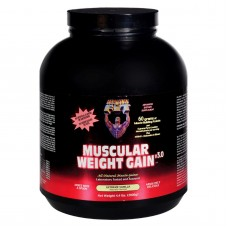 Healthy n Fit Muscular Weight Gain 2 - Vanilla - 4.4 Lb.