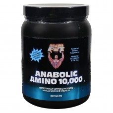 Healthy n Fit Nutritionals Amino 10000 - 360 Tablets