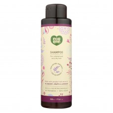 Ecolove Shampoo - Purple Fruit Shampoo For Colored And Very Dry Hair  - Case Of 1 - 17.6 Fl Oz.